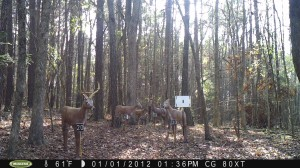 2012_REVIEWRANGE_MOULTRIE_M80XT_0001
