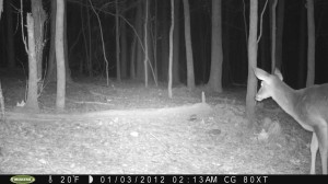 2012_REVIEWSAMPLE1_MOULTRIE_M80XT_0001