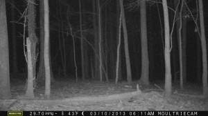 2013_REVIEWSAMPLE1_MOULTRIE_M-990_0015