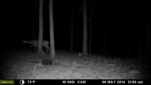2014_REVIEWSAMPLE_MOULTRIE_M-880i_0018