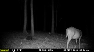 2014_REVIEWSAMPLE_MOULTRIE_M-880i_0021