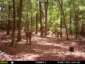 2014_REVIEWRANGE_MOULTRIE_A8_0001