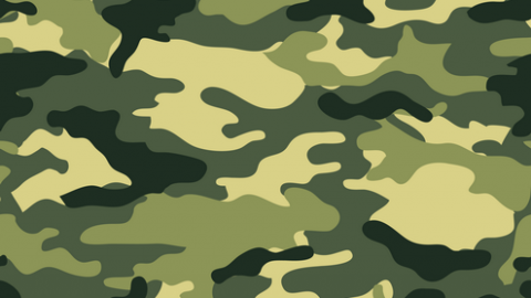 Let's do a little camouflage