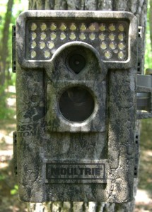 Moultrie M-880C Camera Review