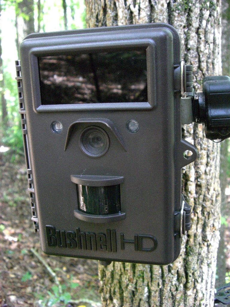 Bushnell Trophy Cam HD Max 119577 Camera Review