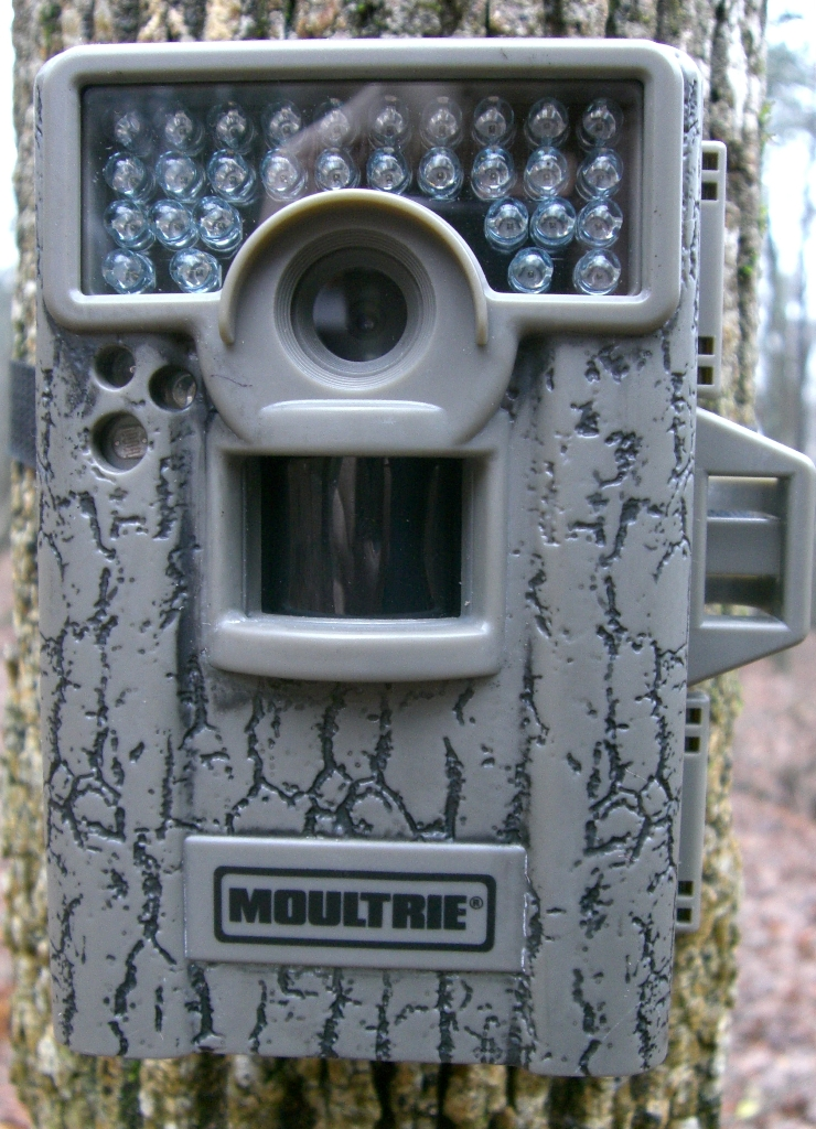 Moultrie M-880 Camera Review