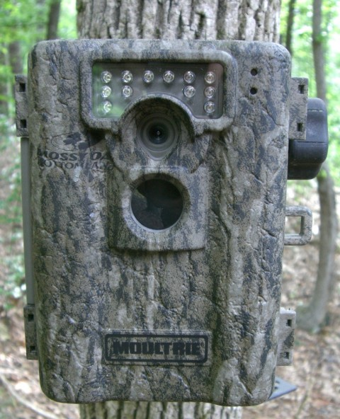 Moultrie A8 Camera Review