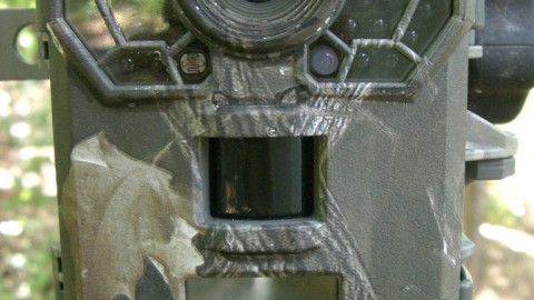 Stealth Cam G42NG Camera Review