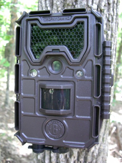 Bushnell Trophy Cam Aggressor Camera Review