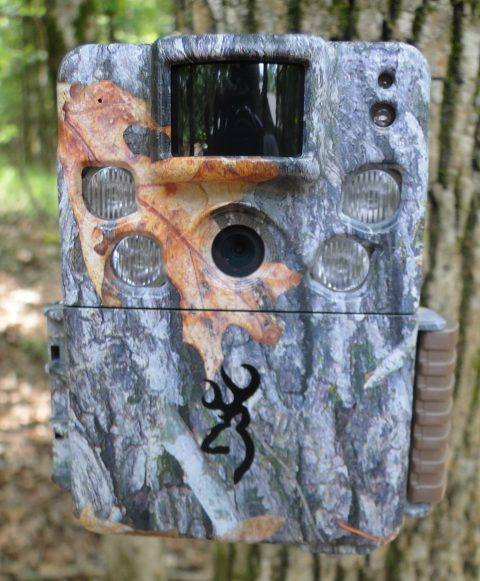 2017 Browning Strike force HD Pro Camera Review