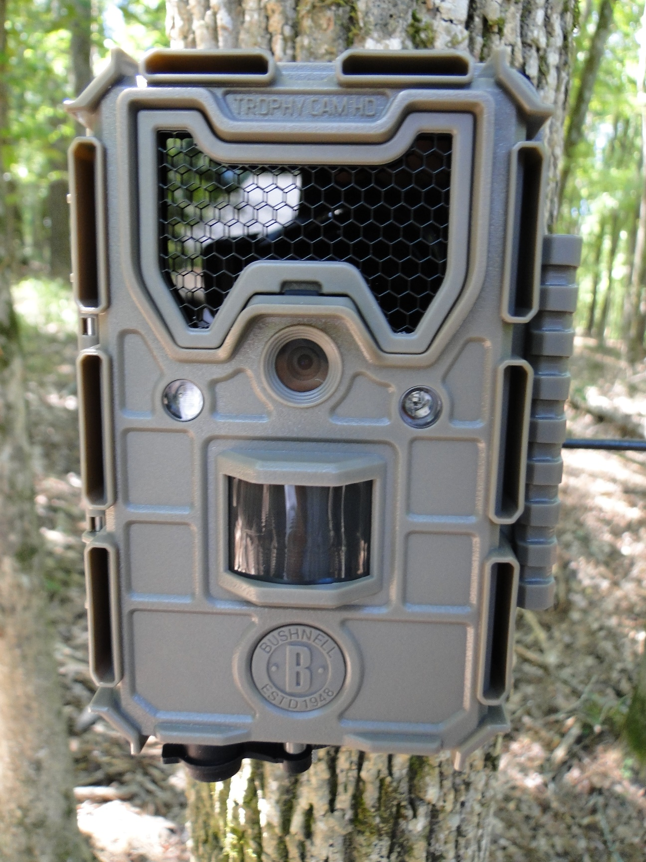 2017 Bushnell Trophy Cam HD Aggressor Camera Review (black flash)