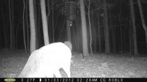 2012_REVIEWSAMPLE_MOULTRIE_M80BLX_0004