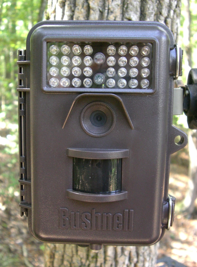 bushnell trophy cam model 119636 camera review. Black Bedroom Furniture Sets. Home Design Ideas