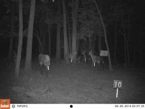 2014_REVIEWRANGE_BUSHNELL_Trophy Cam 119636_0012
