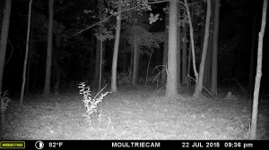 2015_REVIEWSAMPLE_MOULTRIE_M-880-Gen2_0143